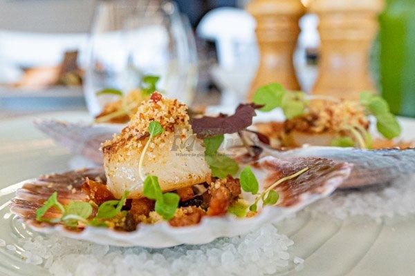 scallops at fish dvine, airlie beach restaurant